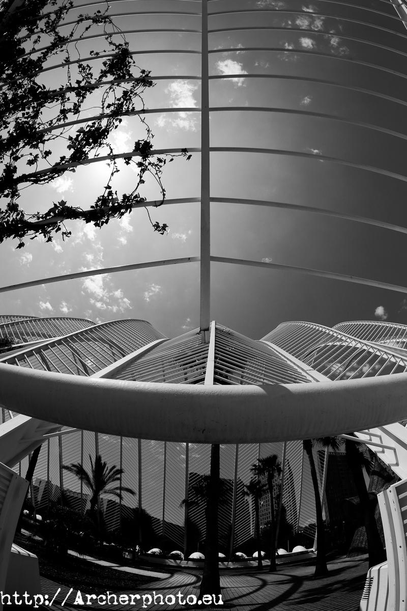 Umbracle. Ciudad de las Artes y las Ciencias de Valencia de Santiago Calatrava. Foto: Archerphoto