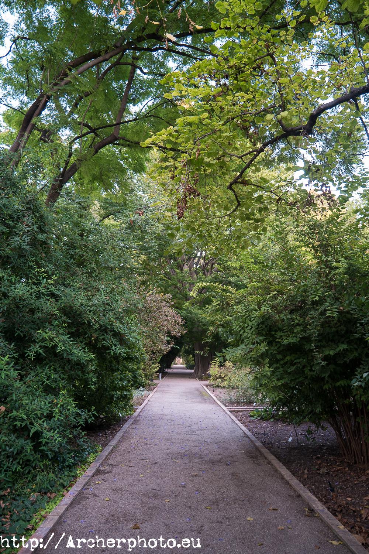 Jardín Botánico de Valencia, por Sergi Albir